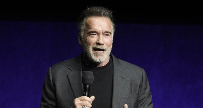 Arnold Schwarzenegger, actor y político