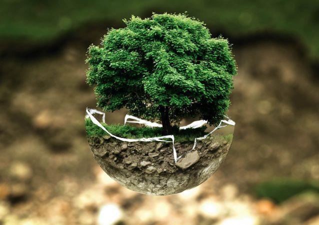 Medioambiente (imagen referencial)