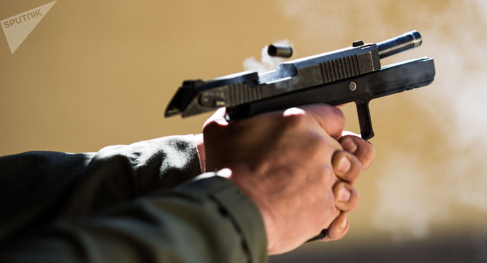 La pistola Udav