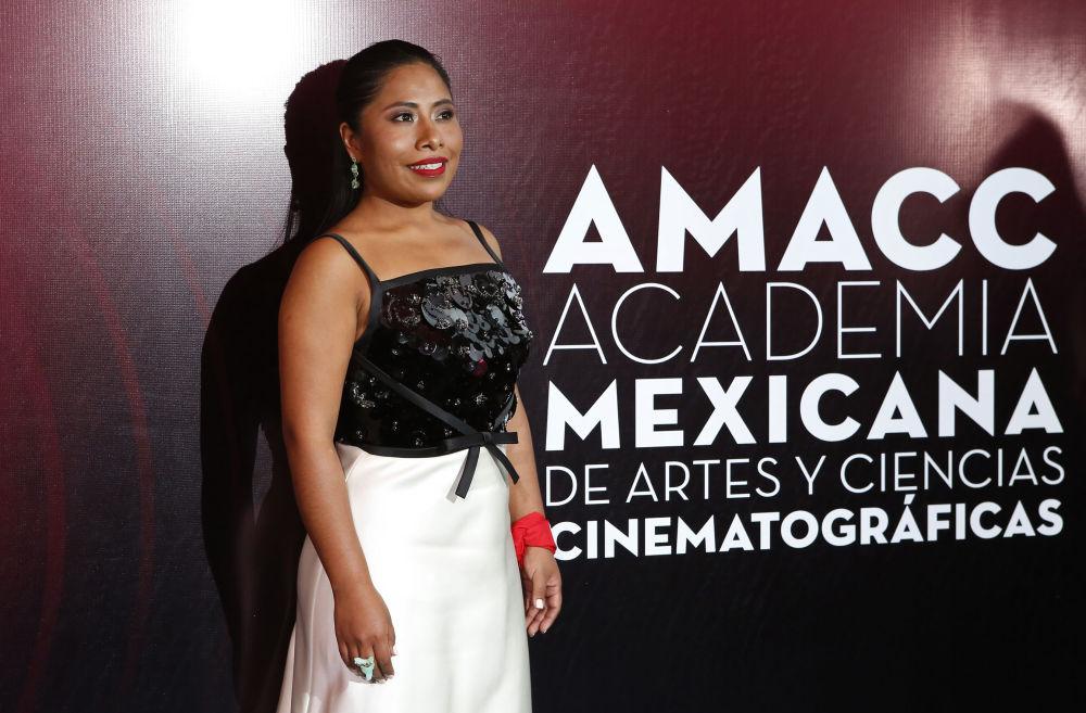 Lo mejor del cine mexicano: la 61ª edición de los premios Ariel