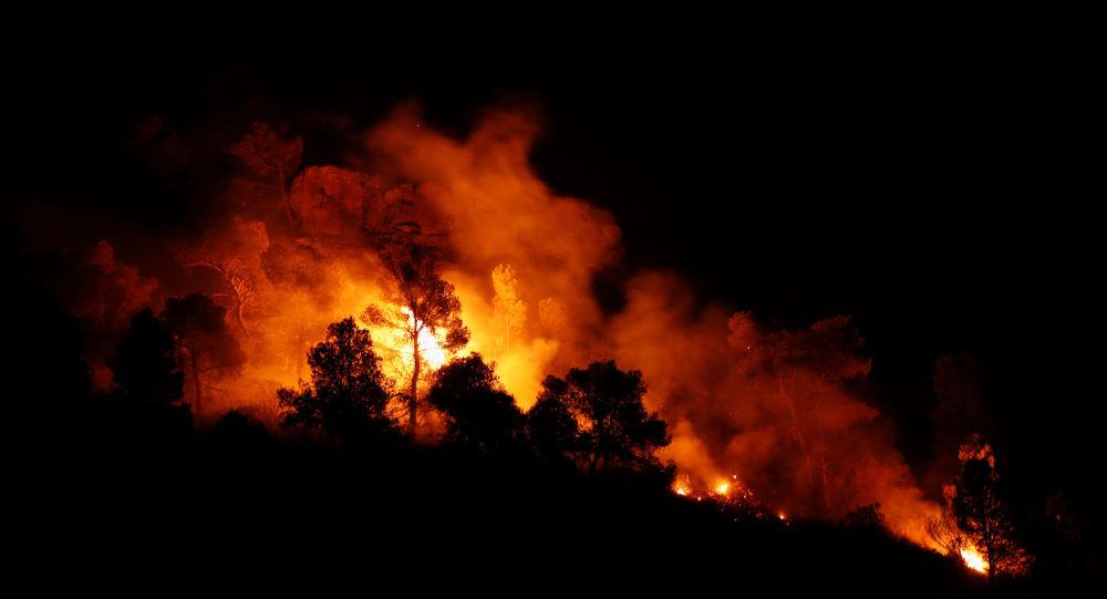 Incendio forestal en Cataluña