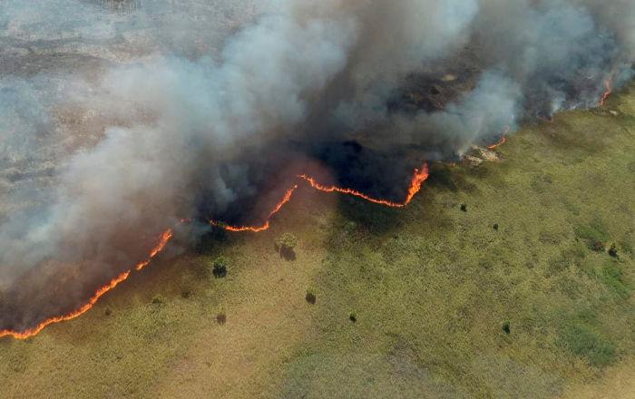 Controlan 70% de incendio en reserva de Sian Ka'an en playas del Caribe mexicano