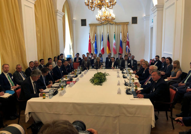 La reunión extraordinaria de la comisión conjunta sobre el PAIC en Viena