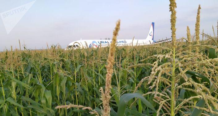 Un A321 aterriza de emergencia cerca de Moscú