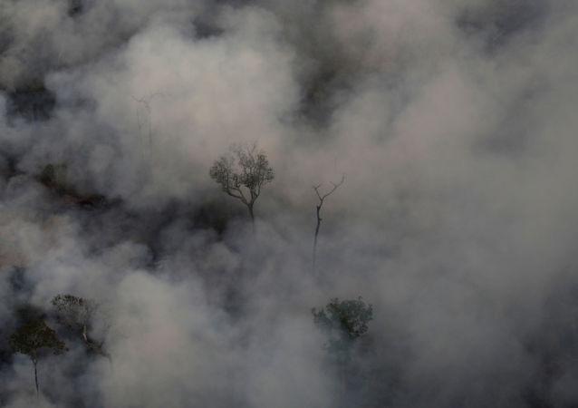 Incendios en la Amazonía