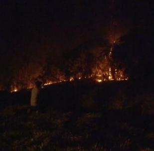 Los incendios forestales afectan a la Amazonía peruana