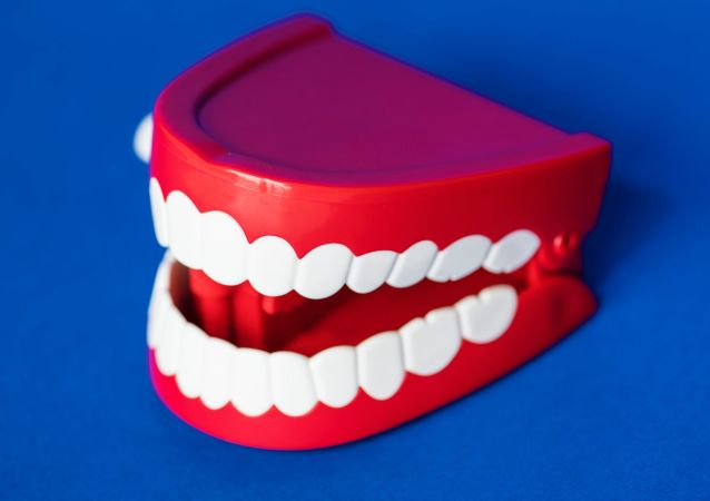 Dentadura, imagen referencial