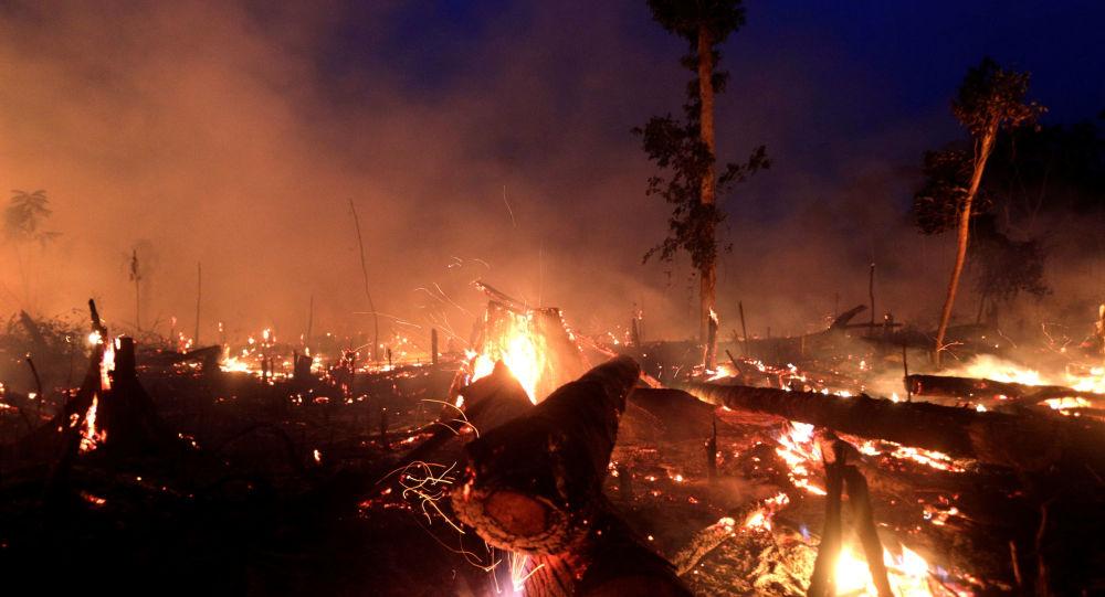 Incendios en Amazonía (archivo)