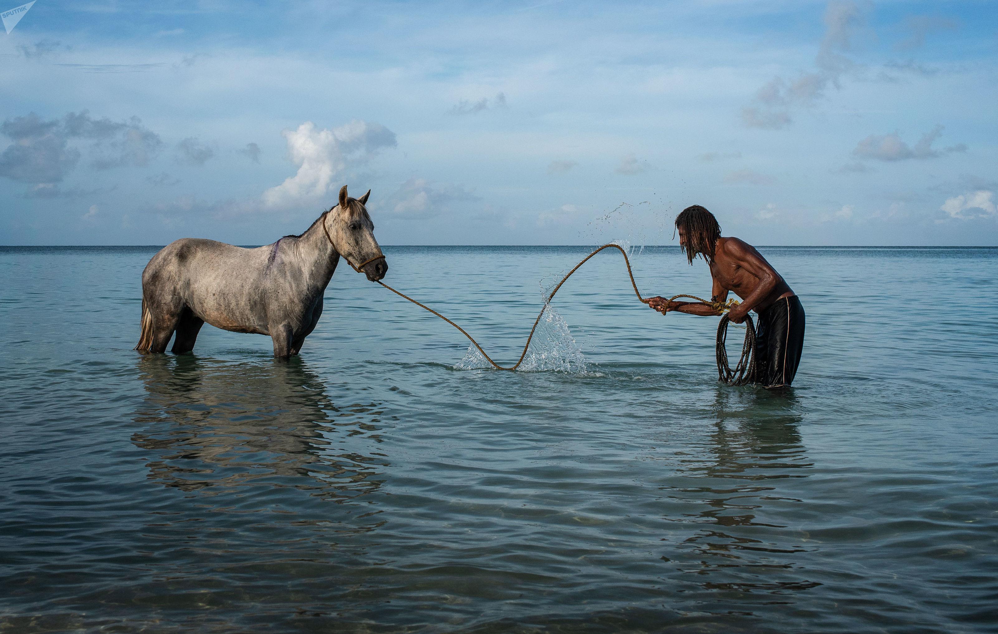 Santo Caponne, residente local, con el caballo en el mar cerca de Big Corn island