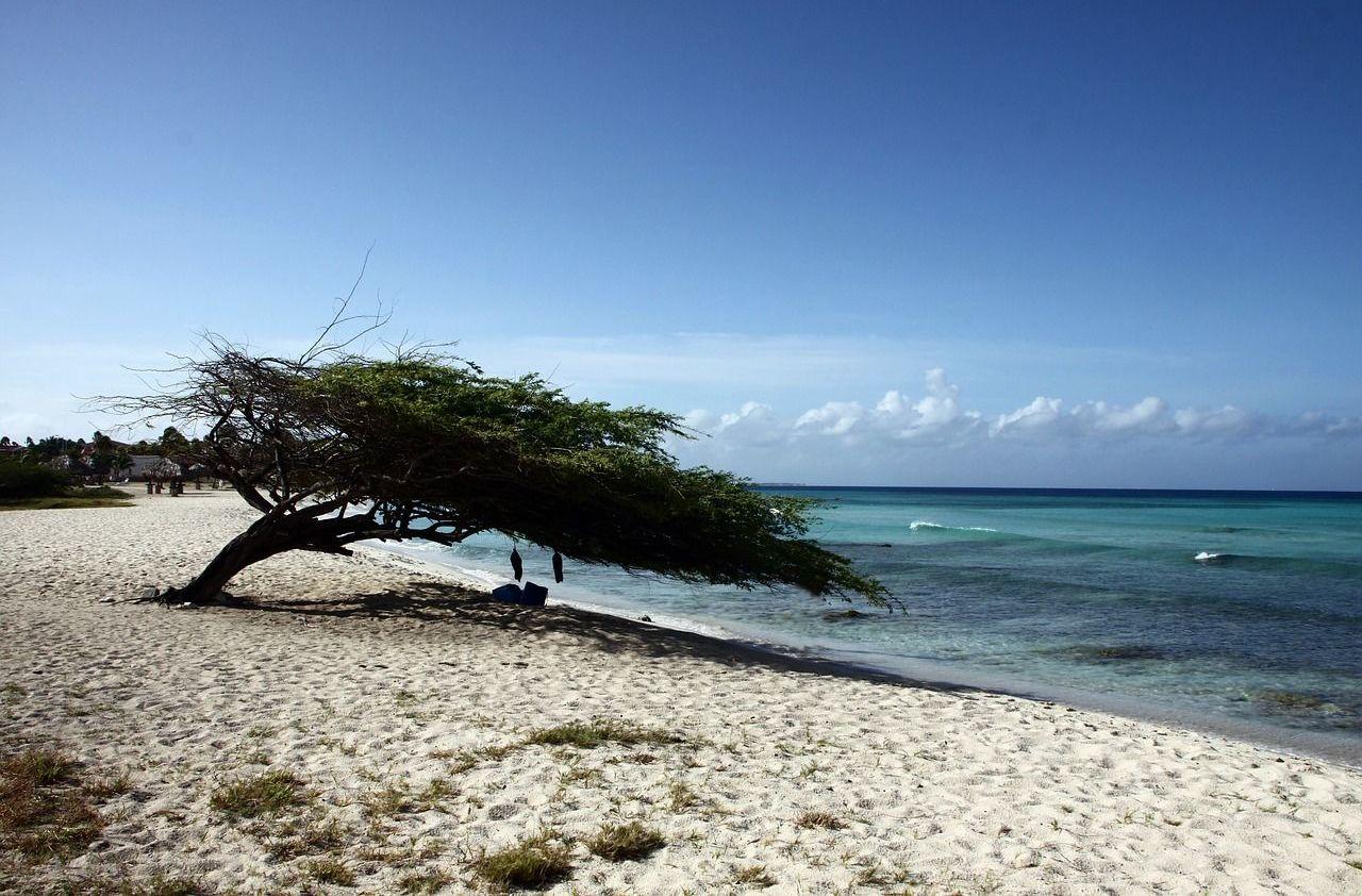 Una playa en Aruba