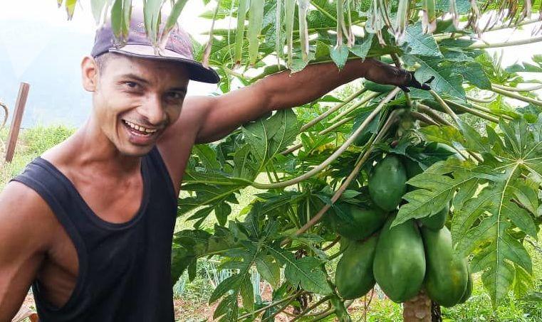 Víctor Mendoza junto a una de sus plantas de lechoza
