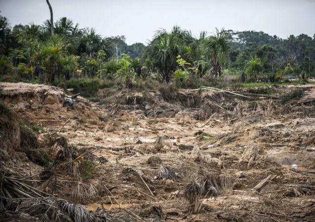 Deforestación causada por minería ilegal en la Amazonía peruana