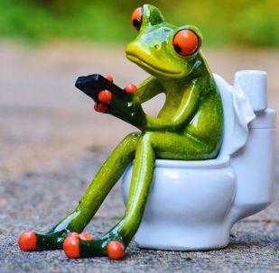 Una rana con un teléfono móvil sentada en un indoro (imagen referencial)