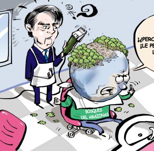 Bolsonaro esquila la Amazonía