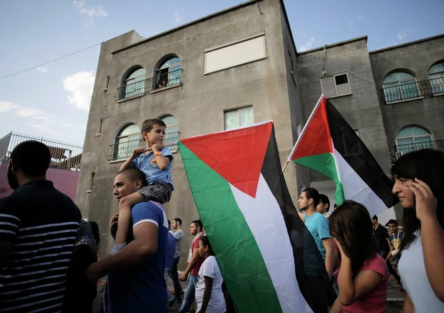 An Israeli Arab boy carries a Palestinian flag during a march in the northern town of Sakhnin October 1, 2014