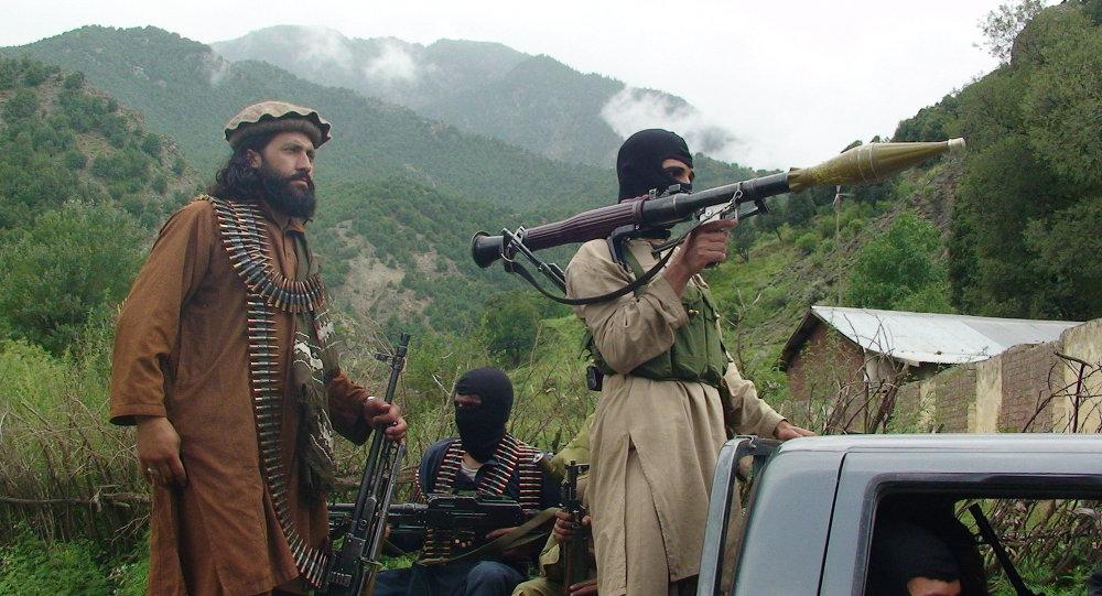 Talibanes paquistaníes (archivo)