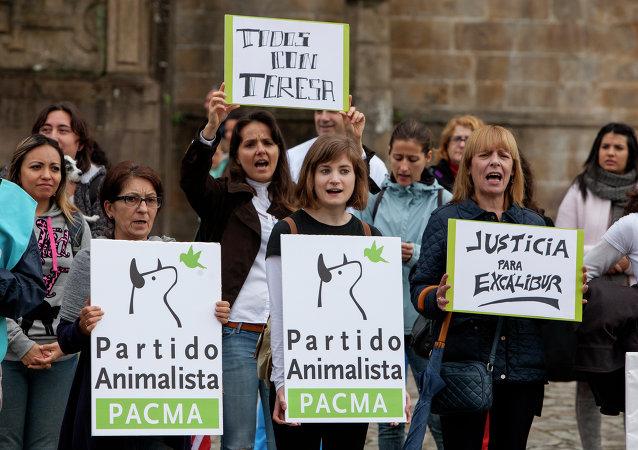 Santiago de Compostela: Concentración por Teresa y Excalibur