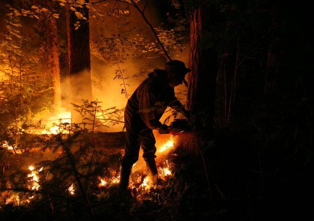 Incendios forestales en Siberia (archivo)