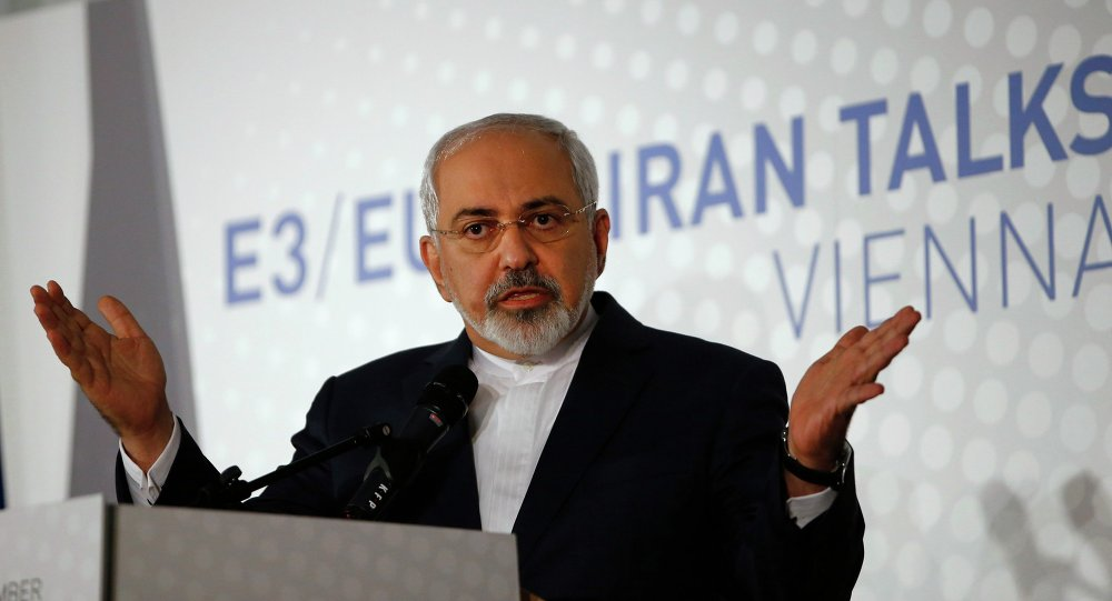 Iranian Foreign Minister Javad Zarif addresses a news conference after a meeting in Vienna November 24, 2014.