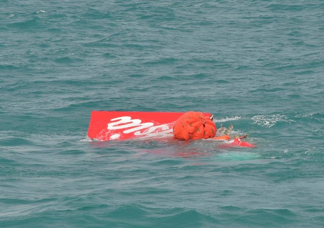 Part of the tail of AirAsia QZ8501 floats on the surface after being lifted as Indonesian navy divers conduct search operations for the black box flight recorders and passengers and crew of the aircraft, in the Java Sea January 10, 2015.