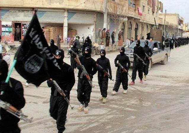 Combatientes del grupo yihadista Estado Islámico