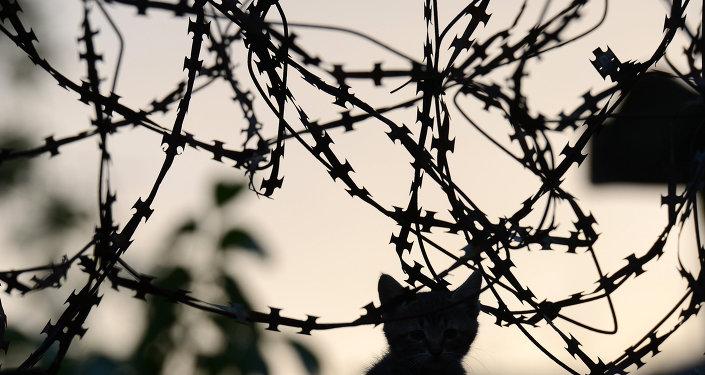 184 días de guerra en Ucrania