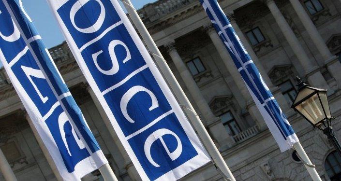 Las banderas de la OSCE