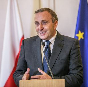 Grzegorz Schetyna, ministro de Asuntos Exteriores de Polonia