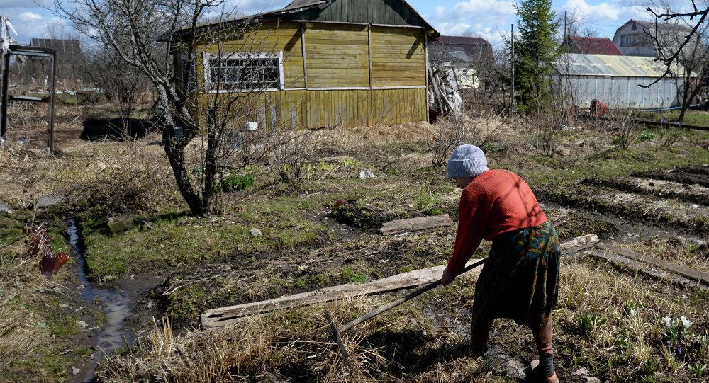 Diputados rusos proponen entregar tierras gratis para desarrollar territorios lejanos