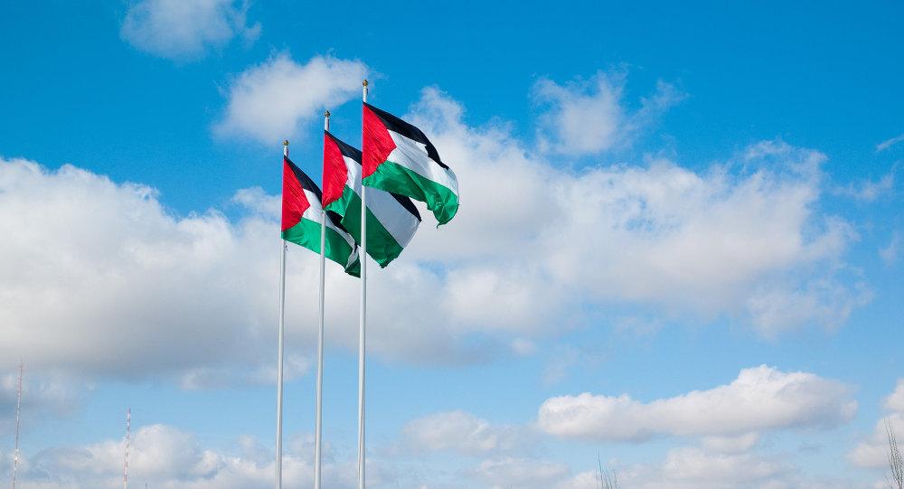 Banderas de la Autoridad Nacional Palestina (ANP)