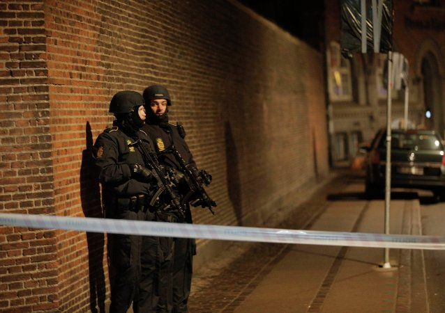 Policemen are seen along a street in central Copenhagen, early February 15, 2015 following shootings at a synagogue in Krystalgade