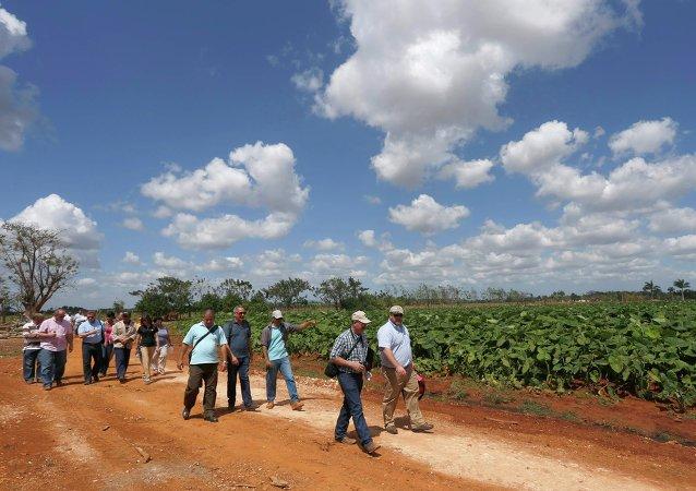 Miembros de la Coalición Agrícola de Estados Unidos para Cuba en una granja en Cuba
