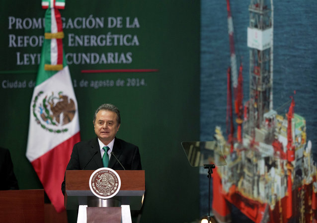 Pedro Joaquín Coldwell, Secretario de Energía de México