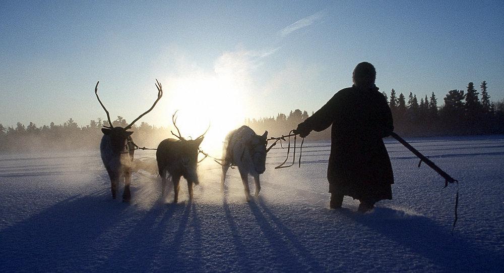 La ganadería de renos y otras alternativas a la 'mili'