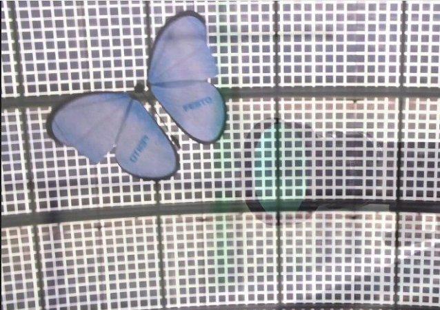 La mariposa electrónica