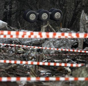 Avión Tu-154 polaco siniestrado en la región rusa de Smolensk (archivo)