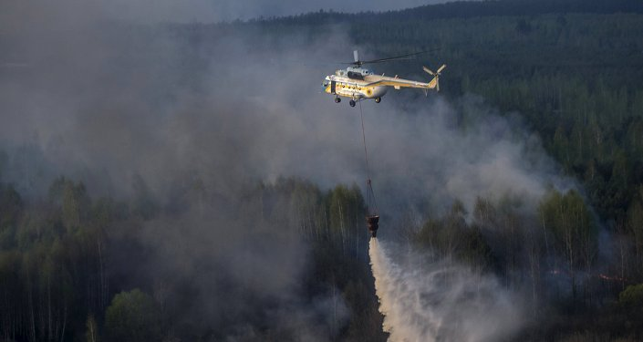 Incendio forestal en la zona de Chernóbil, Ucrania (archivo)
