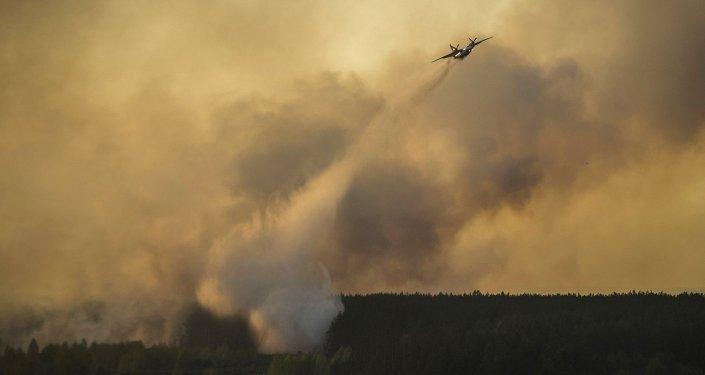 Incendio forestal en Chernóbil