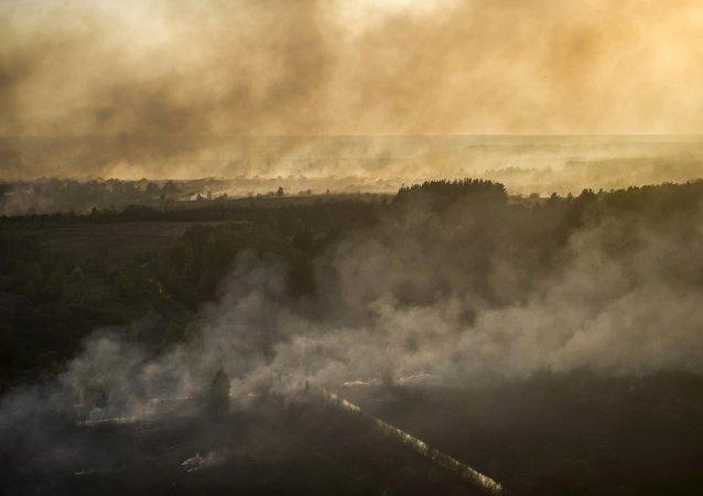 Una vista aérea del humo de los incendios forestales en el norte de Ucrania