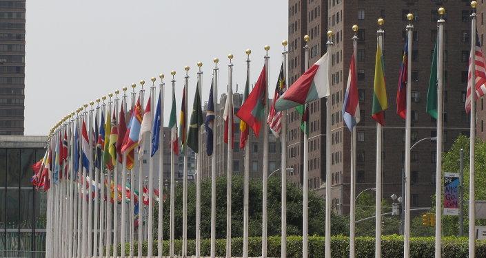 Banderas de los Estados Miembros de las Naciones Unidas frente de la sede de la ONU en Nueva York