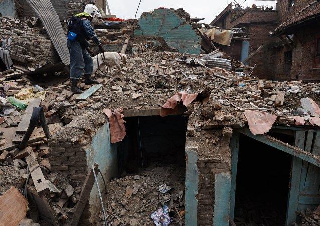 Equipos de rescate entre los escombros de las casas destruidas en Katmandú