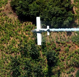 Fumigación de plantacion de coca