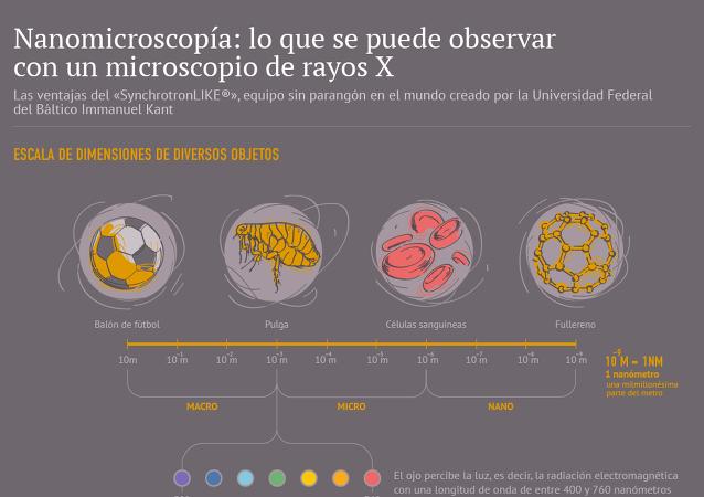 Nanomicroscopía: lo que se puede observar con un microscopio de rayos X