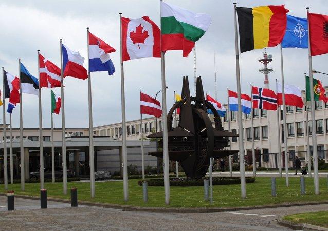 Alemania pide a sus socios reactivar el Consejo OTAN-Rusia