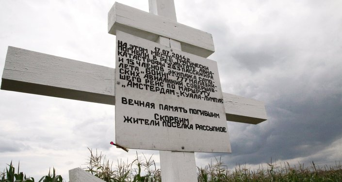 Lugar de la catástrofe del vuelo de MH17 en Ucrania