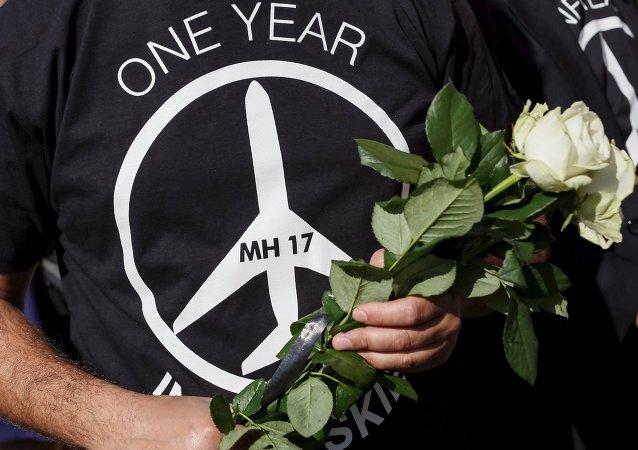 La ICAO creó base de datos sobre las zonas de conflicto por el MH17
