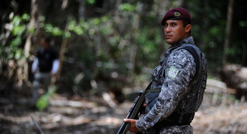 Un agente de la Fuerza Nacional de Seguridad Pública en el bosque de Amazonia