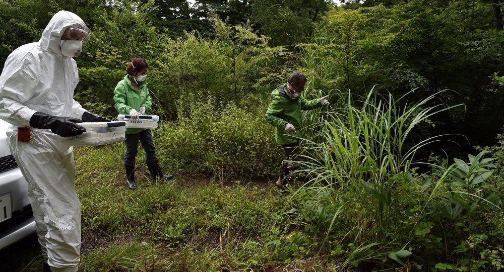 Investigadores de Greenpeace recogen muestras de tierra en la prefectura de Fukushima