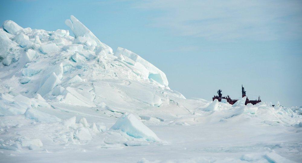 Ártico