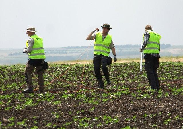 Investigadores en el lugar del siniestro del MH17 en el este de Ucrania